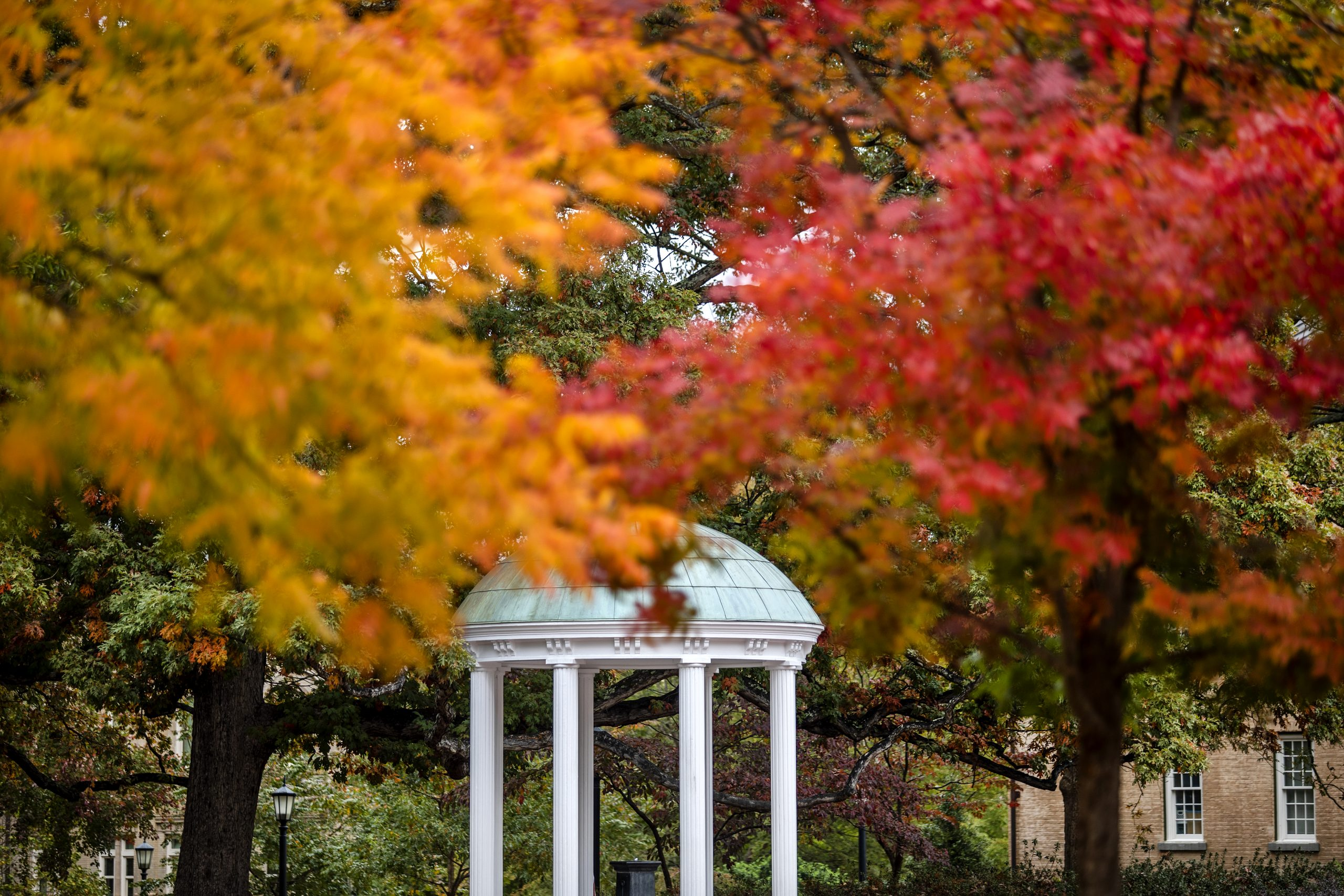 The Old Well in autumn