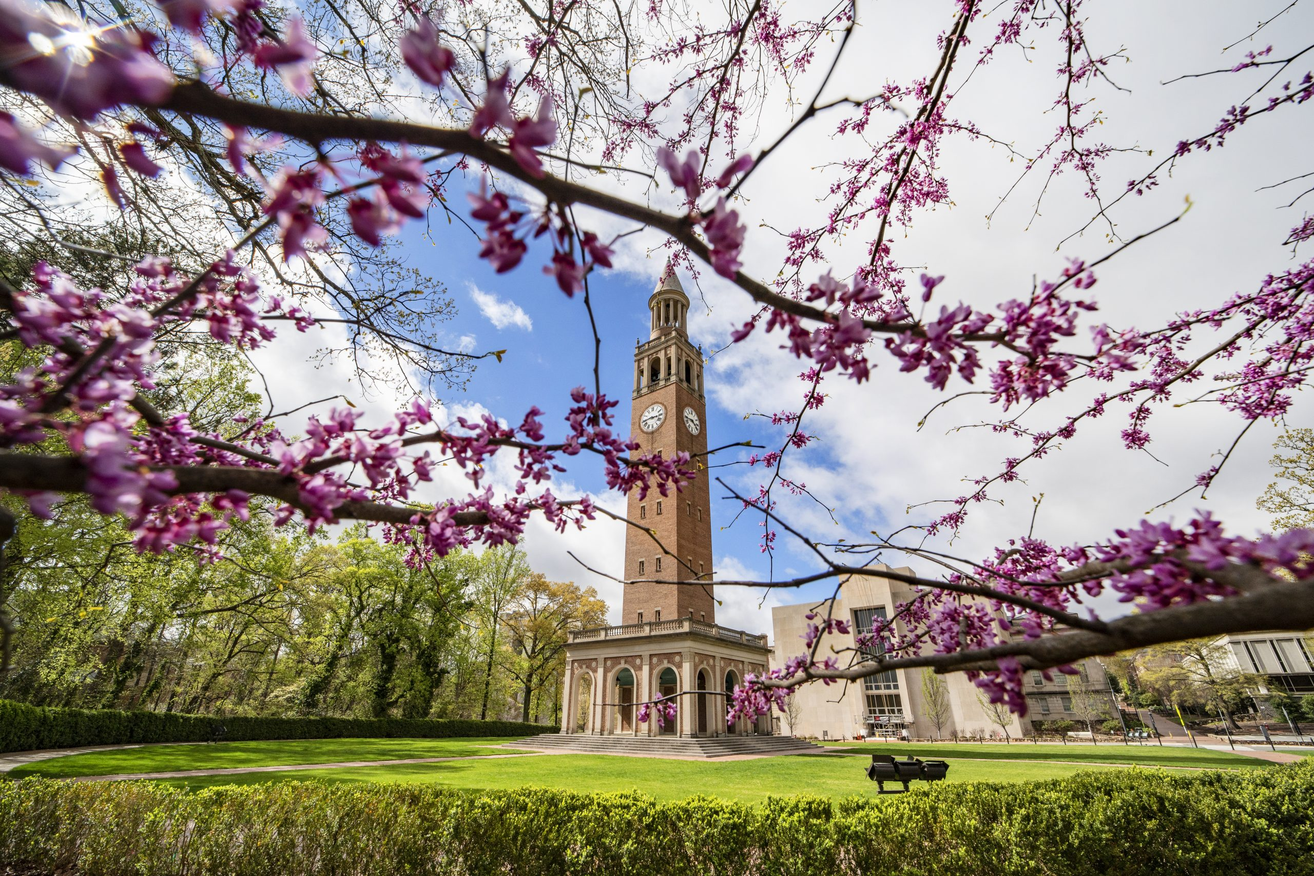 Bell tower in springtime.