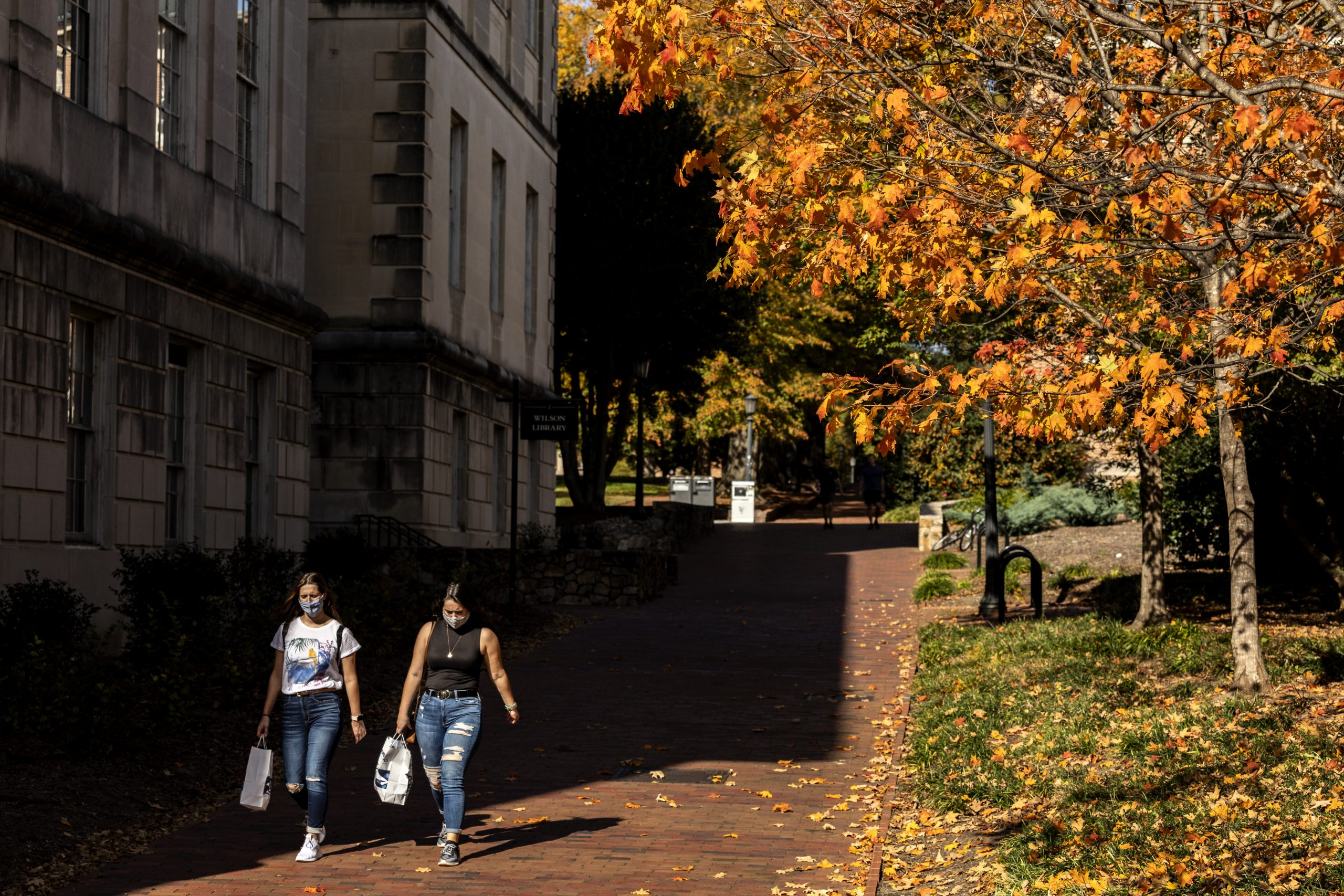 Autumn campus scene